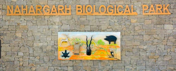 Jaipur, Rajasthan, Nahargarh Biological park, Vasundhara Raje, जयपुर, नाहरगढ़ बॉयोलॉजिकल पार्क, वसुन्धरा राजे