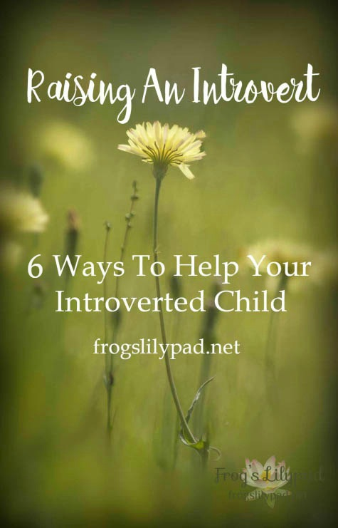 6 Ways To Help In Raising An Introvert: We live in a social, outgoing culture. Being social and the life of the party is not the life of an introvert. frogslilypad.net