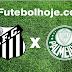 Jogo Palmeiras x Santos ao vivo hoje