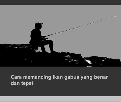 Cara memancing ikan gabus yang benar dan tepat