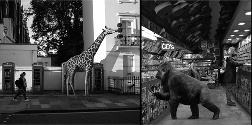 00 ceslovas cesnakevicius the zoo on our streets