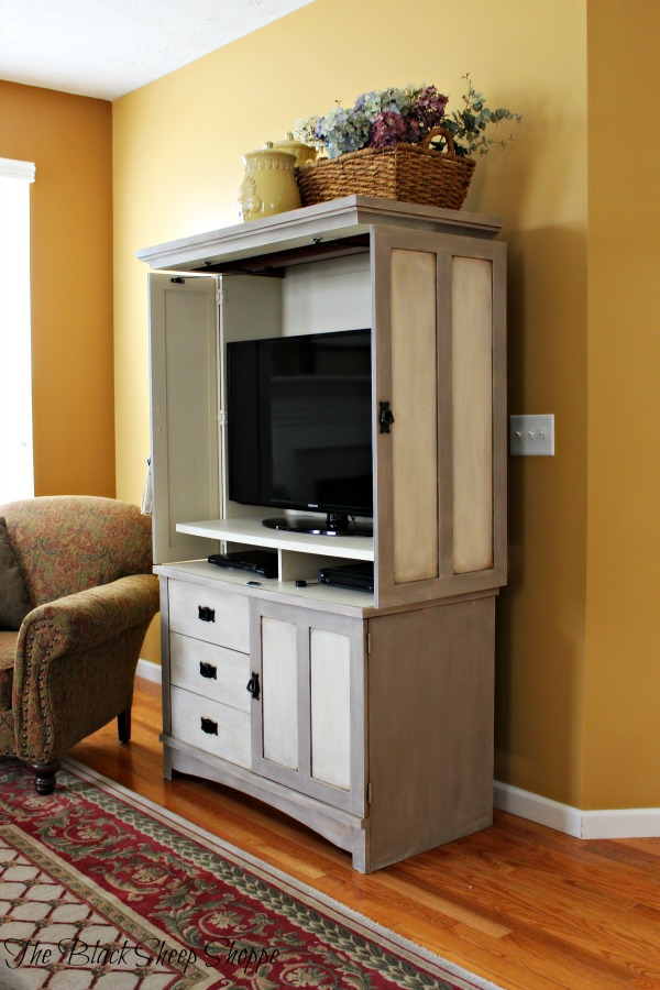 Bat-wing style doors on TV cabinet.
