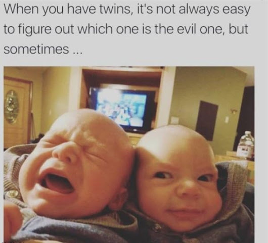 When You Have Twins
