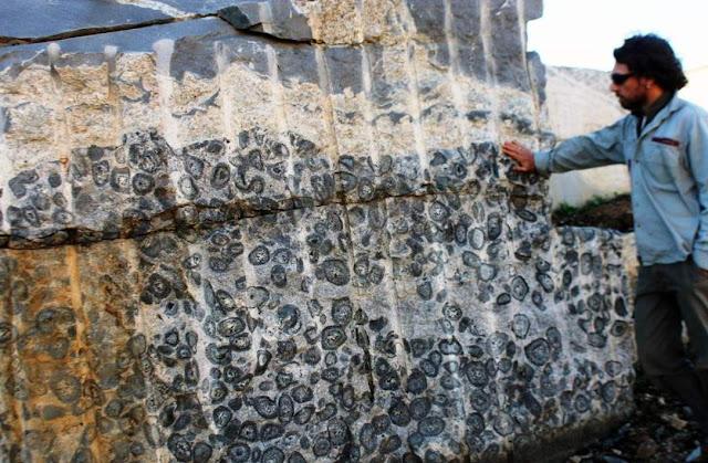 Orbicular granite cut by a co-magmatic intrusion of granite and fine-grained diorite.