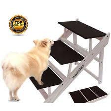 rampas e displasia em cães