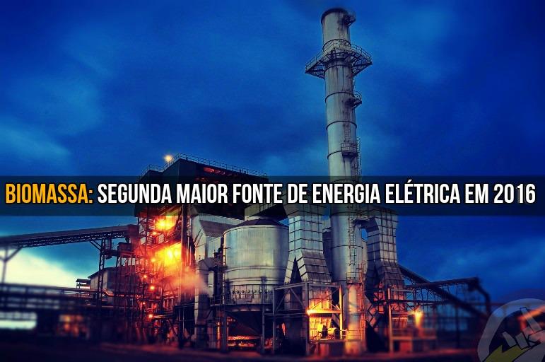 Biomassa foi a segunda maior fonte de energia elétrica em 2016.