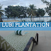 Day Tour at Lubi Plantation #vdsf #widefest #longfest