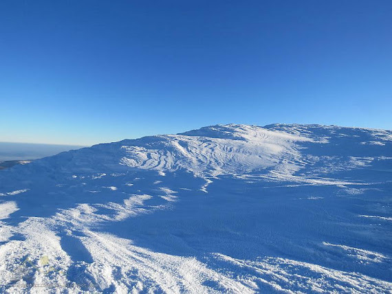 Biała, lodowa pustynia.