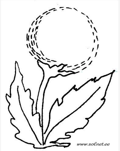 Поэтапные рисунки с аннотациями