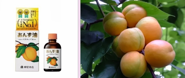 Willow shop apricot oi      Hair oil az
