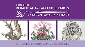2019 Winter/Spring courses