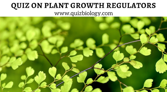 Quiz on Plant Growth Regulators