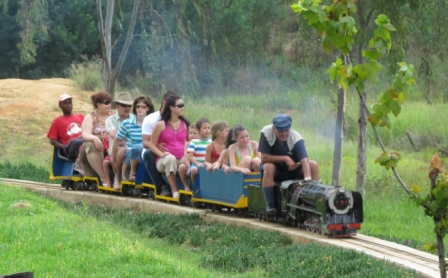 Remarkable Train Rides For Kids In Pretoria