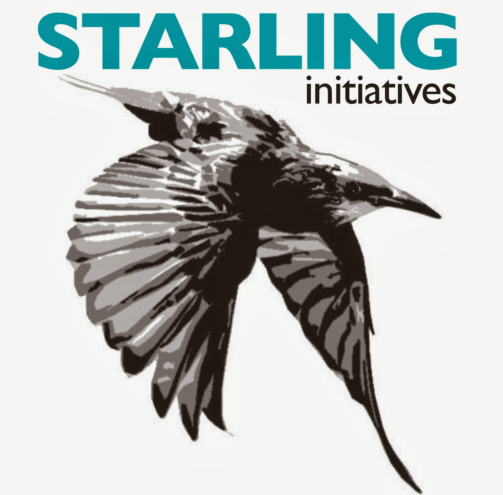 Cole-Slaw: Why Call This New Ministry Venture Starling Initiatives?