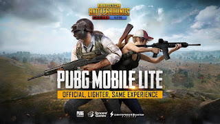 Screenshot of PUBG Lite