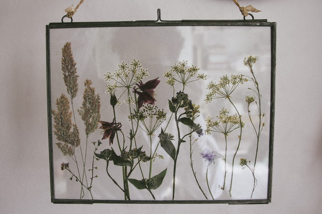 A handmade cottage  Pressed wild flowers in glass frames Pressed wild flowers in glass frames