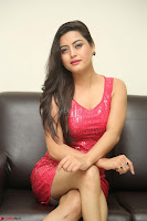 Shipra Gaur in Pink Short Tight Dress ~  Exclusive Poshoot 76.JPG