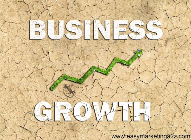 Business Growth 3