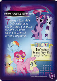 My Little Pony Princess Cadance & Shining Armor Equestrian Friends Trading Card