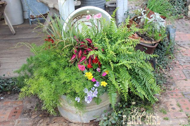 rustic garden ideas using vintage containers