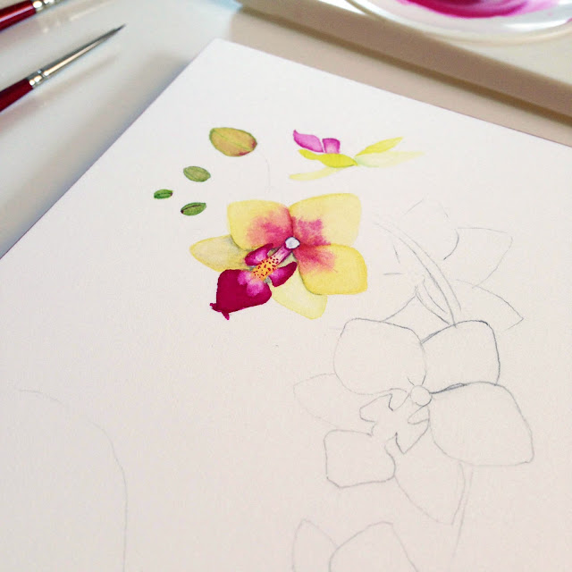 watercolor, process, painting process, botanical painting, orchids, Anne Butera, My Giant Strawberry