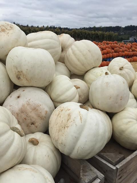 halloween, fall, money saving, dave ramsey