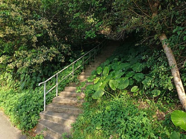 セークガー横にある階段の写真