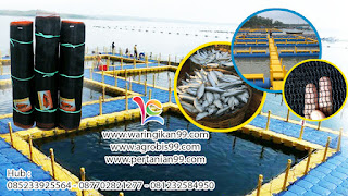 fungsi waring ikan, budidaya ikan nila dengan waring ikan, harga waring rk, waring ikan untuk penjemuran