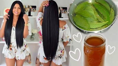 Comment faire son eau de rinçage maison ? 3 astuces pur faire briller ses cheveux naturellement