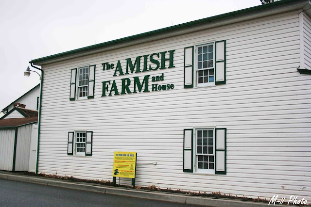M-ii Photo : La Pennsylvanie - Ferme Amish Lancaster