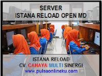 Server Istana Reload Open Pendaftaran MD Guys