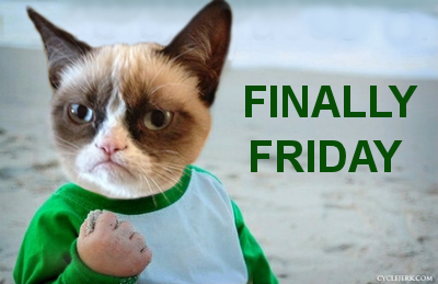 Finally Friday! Grumpy Cat