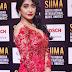 Celebrities At SIIMA Awards 2017