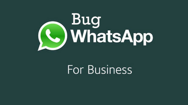 Bug WhatsApp for Business