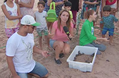 Michelle Trombelli acompanha ação de conservação de tartarugas marinhas em Maceió - Divulgação/Band