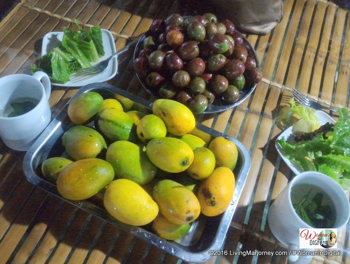 mangga and siniguelas