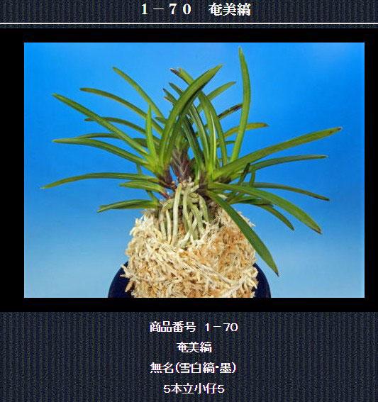 http://www.fuuran.jp/1-70.html