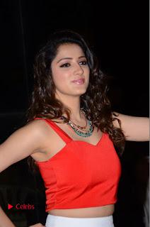 Actress Richa Panai Pictures at Eedu Gold Ehe Gummadikaya Function  0030