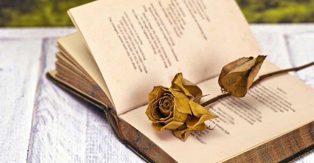 Διάκριση μαθήτριας του 3ου Γυμνασίου Άργους σε διαγωνισμό ποίησης, σε εθνικό επίπεδο