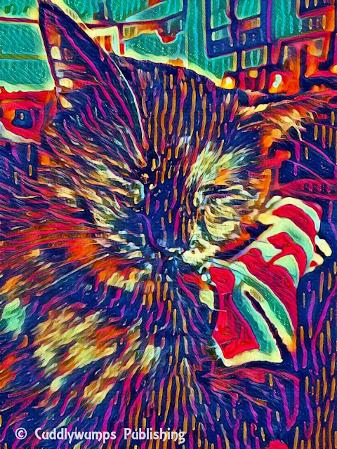 Real Cat Paisley with Picasso and Brave effects from LunaPic