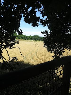 cabane-perchée-domaine-des-vaulx-imagejpeg