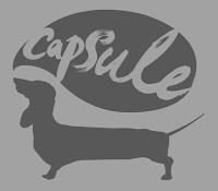 http://www.capsule.org.uk/