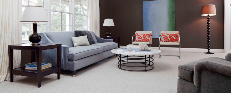 Sitting room with gorgeous light gray carpet
