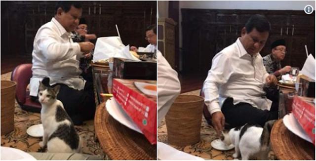 Gerindra Beri Klarifikasi terkait Beredarnya Foto Prabowo yang Makan Bersama Kucing