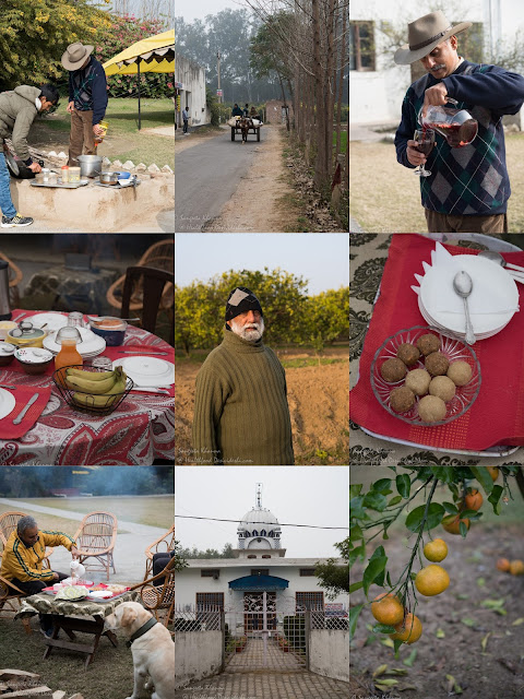 Citrus County, a homesaty in Hoshiarpur
