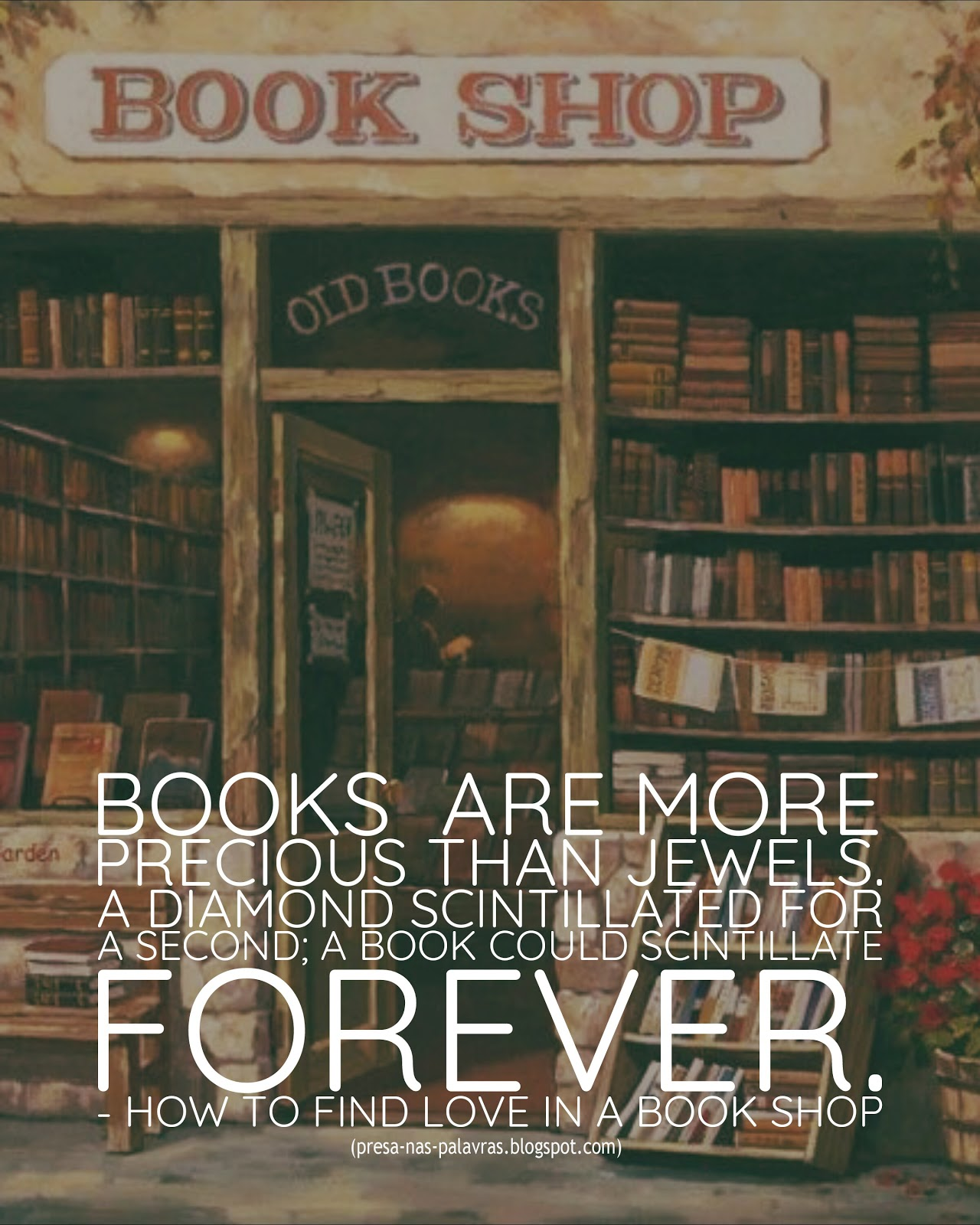 how to find love in a bookshop summary
