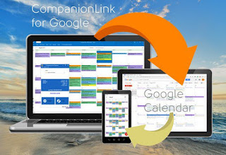 CompanionLink Professional Portable