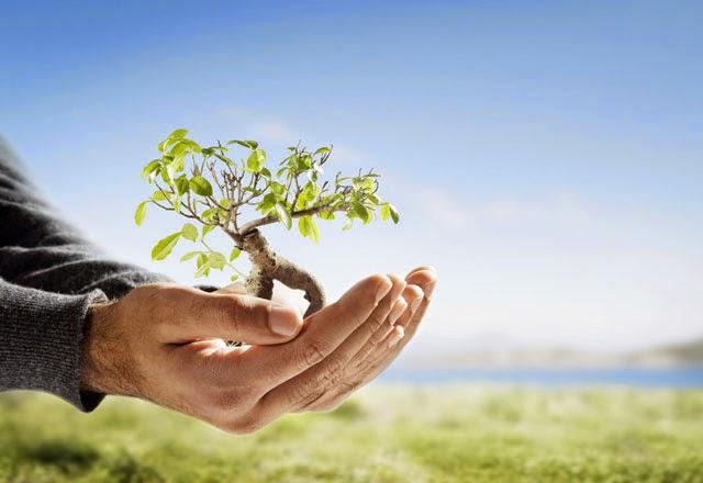 Tabungan, Asuransi, dan Investasi