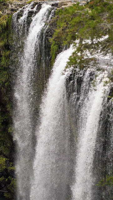 2 weeks in New Zealand for 2nd time visitors: Whangarei Falls on the North Island