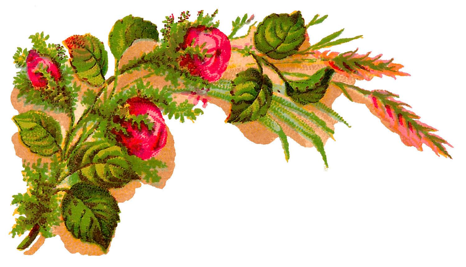 rose flowers digital design - photo #6